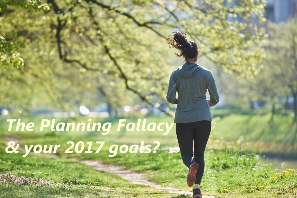 Understand the Planning Fallacy